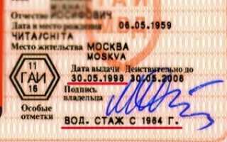 Как узнать дату выдачи первых водительских прав